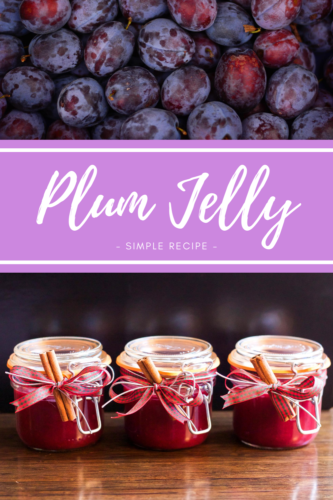 Easy Recipe: Plum Jelly - preserving summer