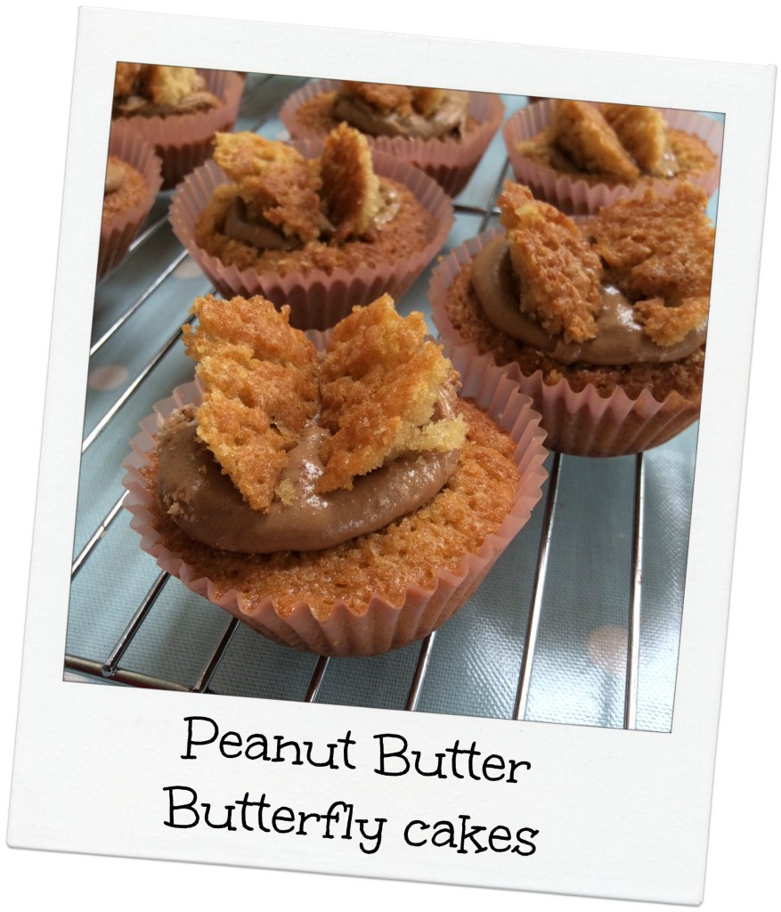 Peanut butter cakes