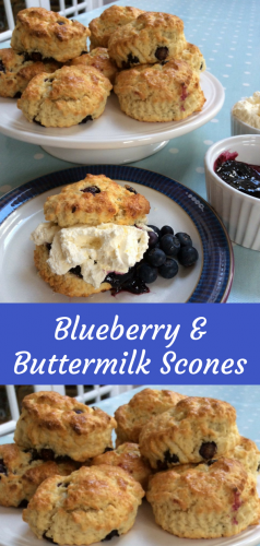 Recipe: Beautiful Blueberry and Buttermilk Scones