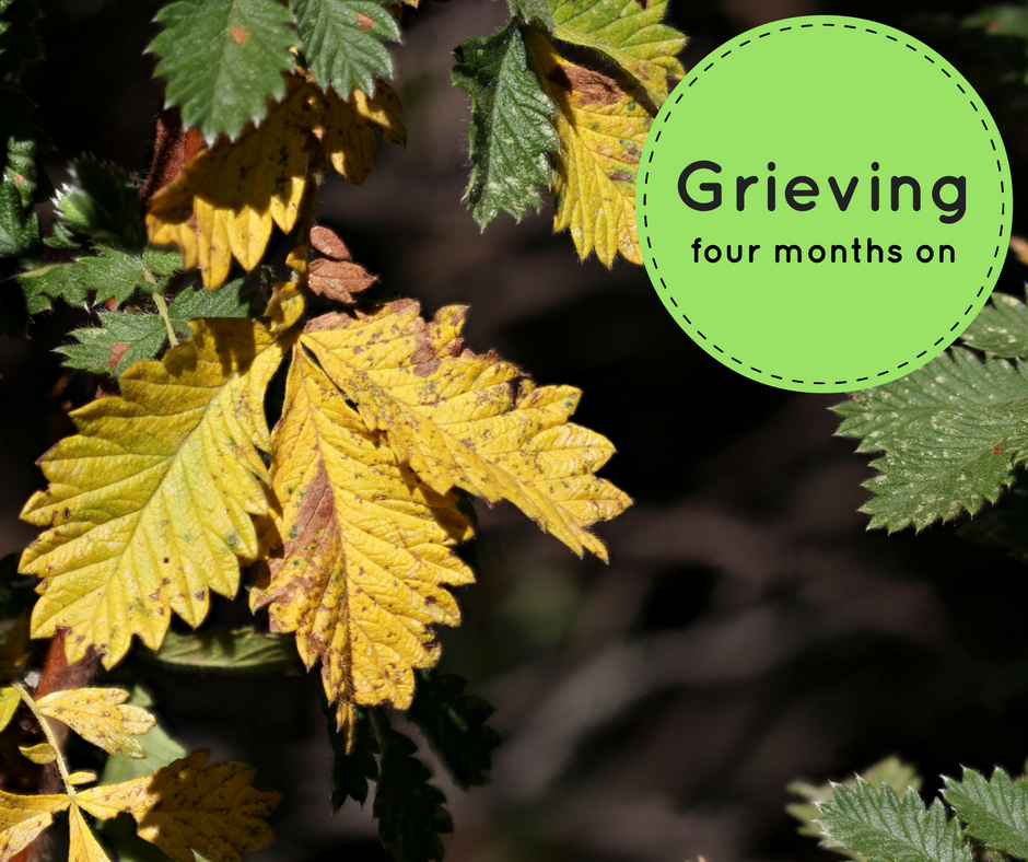 Grieving The Days To Come The Unsaid Everything