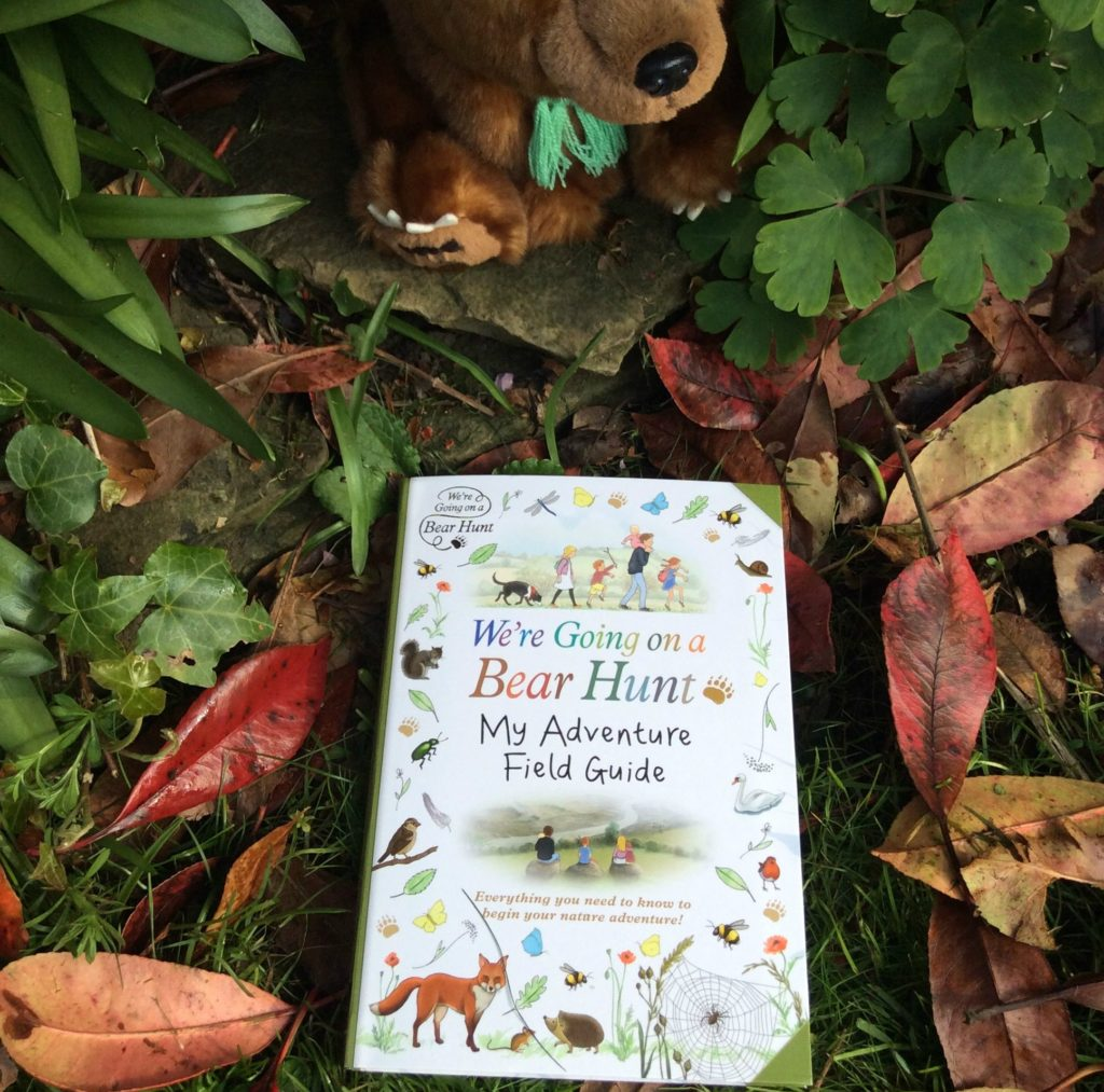 Books: We're Going on a Bear Hunt - Nature Guide Books