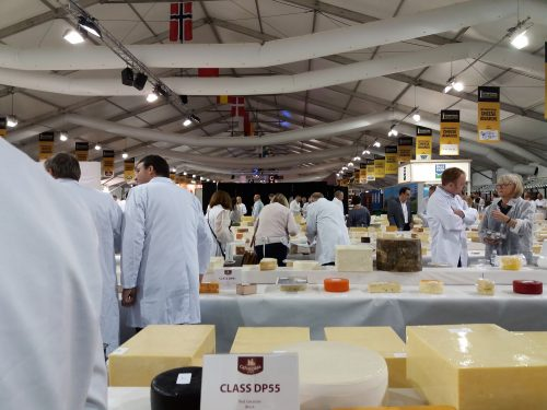 Judging the International Cheese Awards 2017