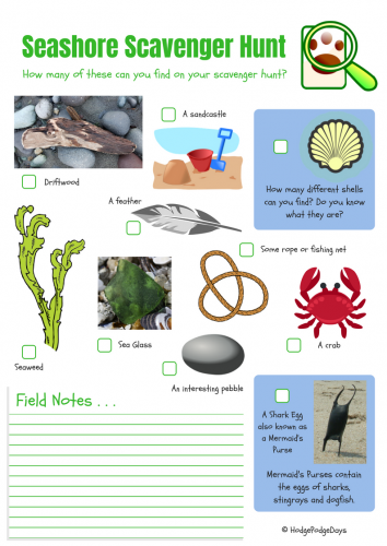 Seashore Scavenger Hunt Activity + FREE Printable