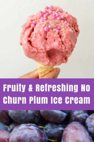 Summer Recipe: No Churn Plum Ice Cream