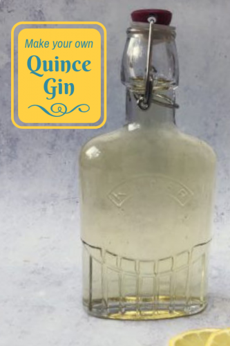 How to make your own Quince Gin
