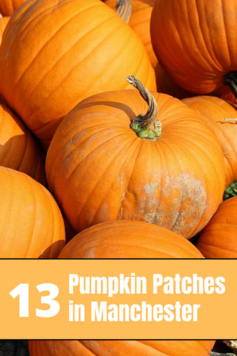 13 Pumpkin Patches in and around Manchester